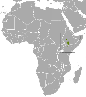 Bottego's shrew - Image: Bottego's Shrew area