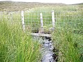Boundary fence crosses small unnamed burn on the moor - geograph.org.uk - 1425185.jpg