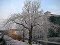 Bradford University (2279498955).jpg