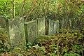 Briceni Jewish Cemetery 10.JPG