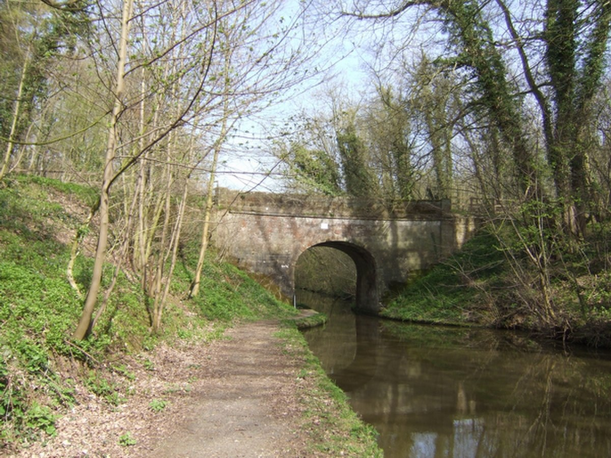Bridge 29 on the Shropshire Union Canal - geograph.org.uk - 390264.jpg
