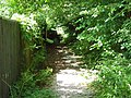 Bridleway, Hillbutts - geograph.org.uk - 1471298.jpg