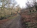 Bridleway near Garth Farm - geograph.org.uk - 1171799.jpg