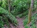 Bridleway to Chesterton, Shropshire - geograph.org.uk - 1304878.jpg