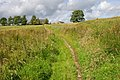 Bridleway to Higher Greystoneley - geograph.org.uk - 520259.jpg