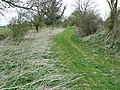 Bridleway to the A338, Burbage - geograph.org.uk - 1229238.jpg