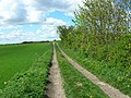Bridleway towards East Huntow - geograph.org.uk - 1284898.jpg