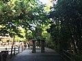 Bronx Zoo - NY - USA - panoramio (1).jpg