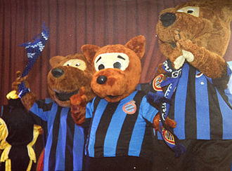 Club Brugge KV - The three Bears; mascots of Club Bruges