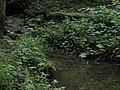 Bubovice-Srbsko - panoramio (65).jpg