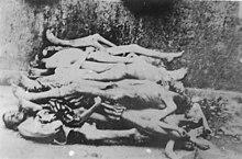 Buchenwald-J-Rouard-17.jpg
