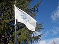 Burns Paiute flag at Walk of Flags.jpg