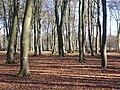 By Rushmoor Arena - geograph.org.uk - 1743175.jpg