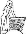 C+B-Agriculture-Fig13-Sifting.PNG