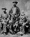 C.S. Sargent Expedition US Forest Census 1880.jpg