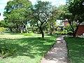 CCHLA - panoramio.jpg