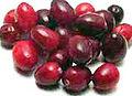 CDC cranberry1.jpg