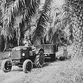 COLLECTIE TROPENMUSEUM Tractor met aanhangwagen voor het transport van geoogste oliepalmtrossen op de onderneming Adolina Ilir TMnr 60044089.jpg