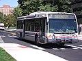 COTA Bus 9920.JPG