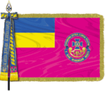 Call flag of the SSU.png