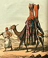 Camel Conveying a Bride to Her Husband.jpg