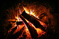 Campfire (15621989189).jpg