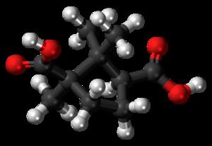 Camphoric acid - Image: Camphoric acid 3D ball