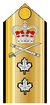 Canadian Rear-Admiral Shoulder Board.png