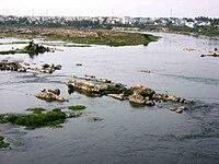 Cauvery at Erode.JPG