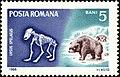 Cave-Bear-Ursus-spelaeus.jpg