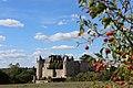 Château de Luynes.jpg