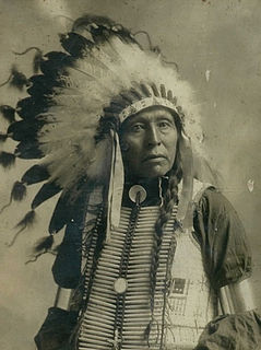 Flying Hawk Lakota leader
