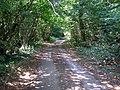 Chithurst Lane, Surrey - geograph.org.uk - 212606.jpg