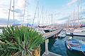 Circolo Nautico NIC Porto di Catania - Sicilia Italy Italia - Creative Commons by gnuckx (5437248054).jpg