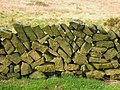 Close up of wall section - geograph.org.uk - 381730.jpg