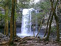 Cloudland SP Falls - panoramio.jpg