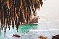 Coast Line Dream (Unsplash).jpg