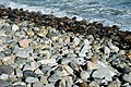 Cobble-pebble shoreline (Seawall, Acadia National Park, Mt. Desert Island, Maine, USA) 1.jpg