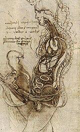 Συνουσία άντρα και γυναίκας (1492)