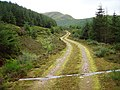 Corrachaive Glen - geograph.org.uk - 239953.jpg
