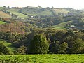 Country around Lurcombe - geograph.org.uk - 1012147.jpg