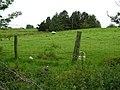 Crockacareb Townland - geograph.org.uk - 487055.jpg