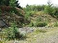 Crynant Forestry Walk - geograph.org.uk - 963674.jpg