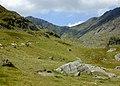 Cwm Cau - geograph.org.uk - 520424.jpg