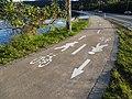 Cycleway (30963809941).jpg