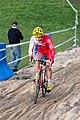 Cyclo-Cross international de Dijon 2014 05.jpg