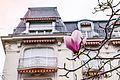 Détails Belle-époque et magnolia sur les quais de Montreux.jpg
