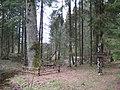 Dūkštų sen., Lithuania - panoramio (9).jpg