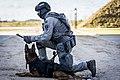 DSI European Security Academy 2020-2.jpg