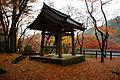 Dai-itoku-ji Kishiwada Osaka pref16bs5.jpg